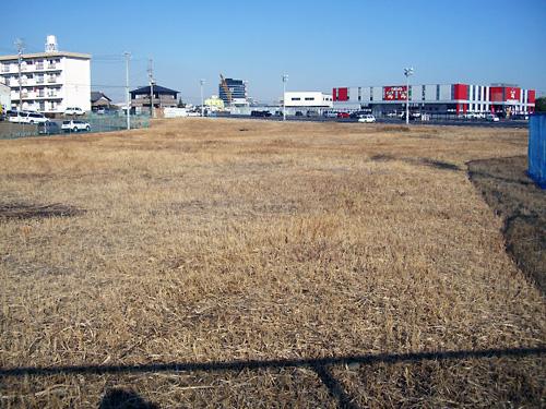 これが主戦場の『大草原』です!