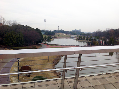 橋からの景色