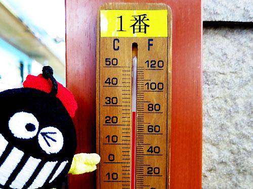ココは27℃!!