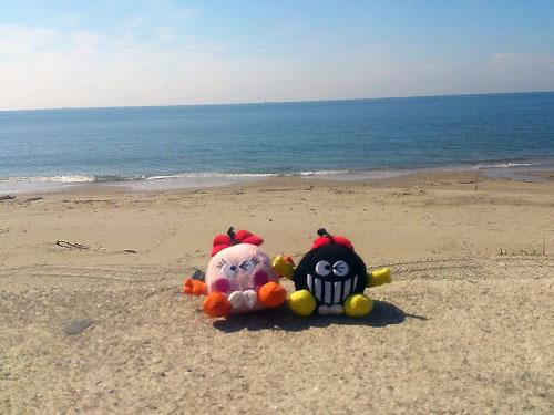 塩ソフトクリーム海を見ながら