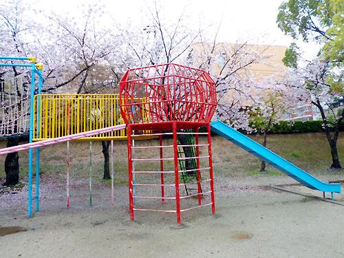 桜に囲まれて綺麗です。