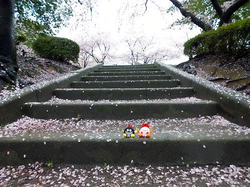 この階段を上った先に。