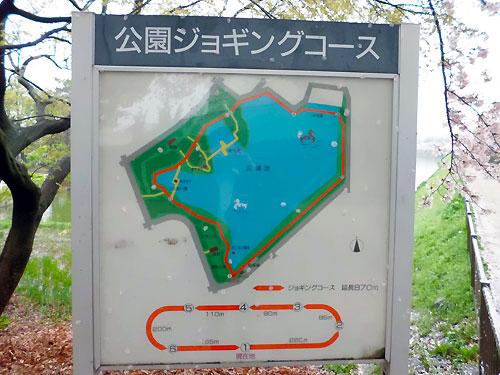 池の周りを一周!