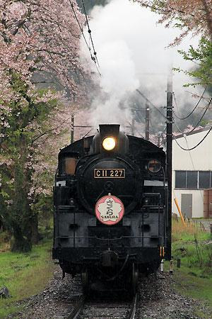 鉄道の写真
