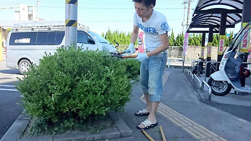 一つ目の植木をチョッキン!