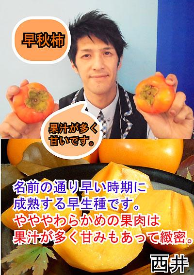 早秋柿(西井君)