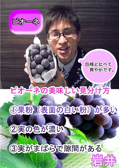 ピオーネ(岩井君)