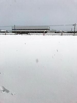 大雪の日の朝