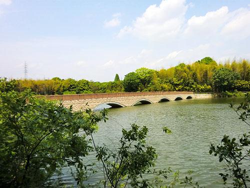 色々な楽しさがある豊明市『勅使水辺公園』