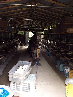 養殖中の小屋