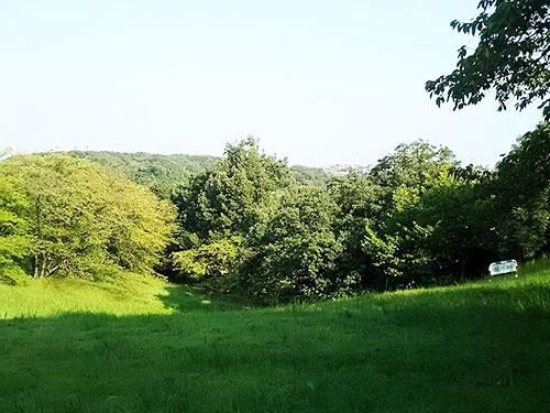 「緑地公園公園1」