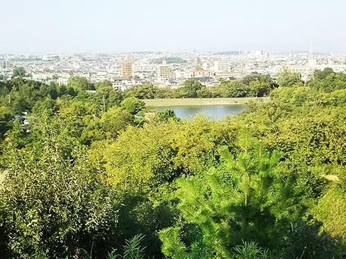 「緑地公園公園2」