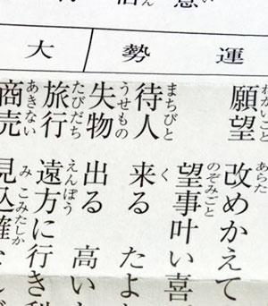 2018年の運勢 ~吉と出るか凶と出るか~