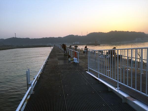 豊浜漁港釣り桟橋
