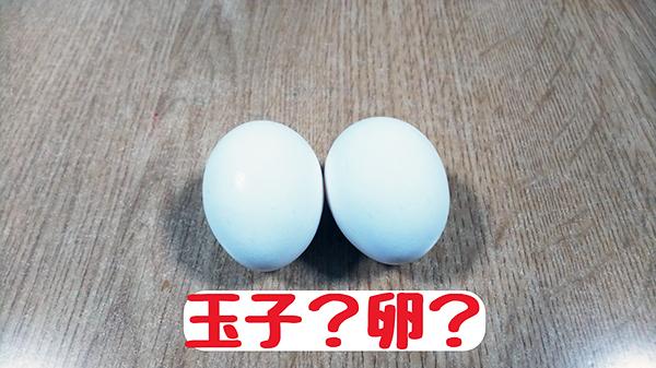 玉子?卵?