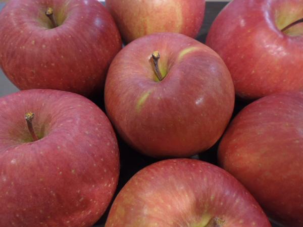 りんごちゃんの全ては私の物♡