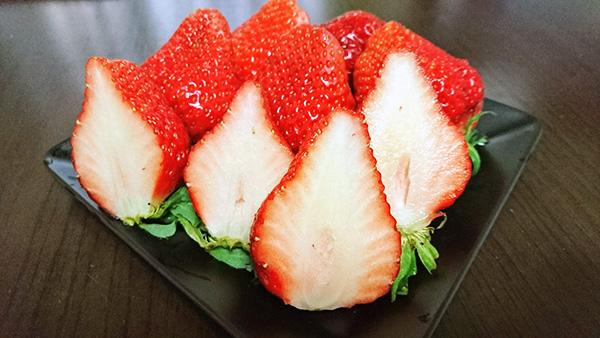 イチゴの断面図