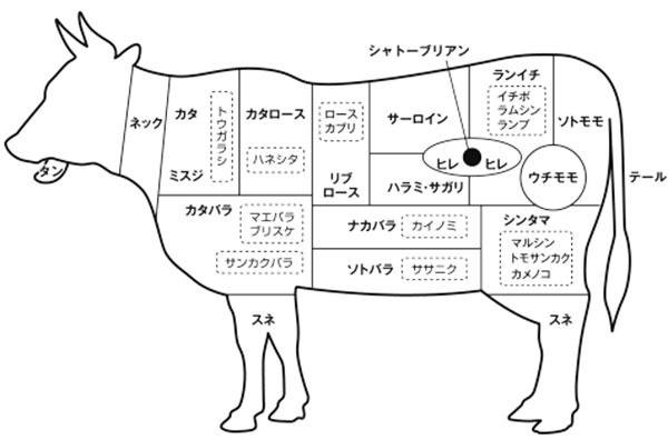 牛さんの部位