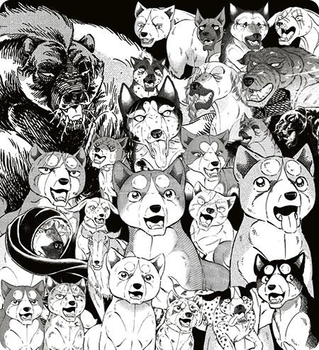野犬の群れ
