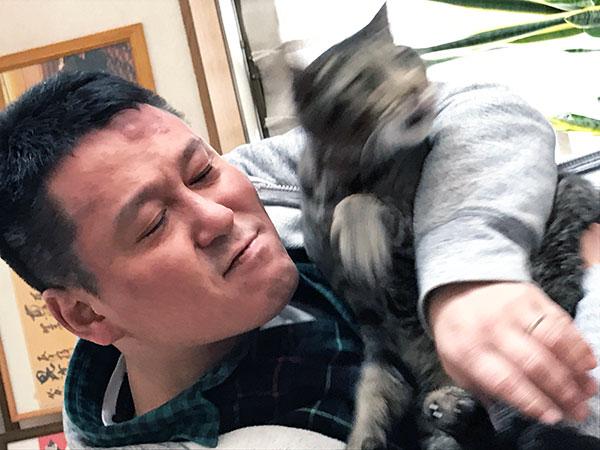 猫には嫌われてますが
