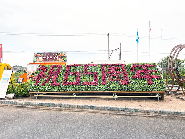 武豊町制65周年