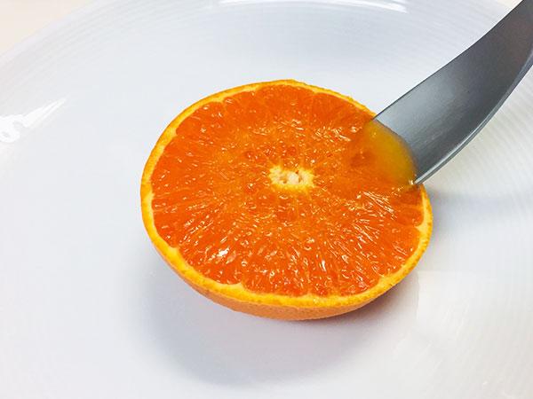有楽青果部看板娘おすすめ果物💛「せとか」編