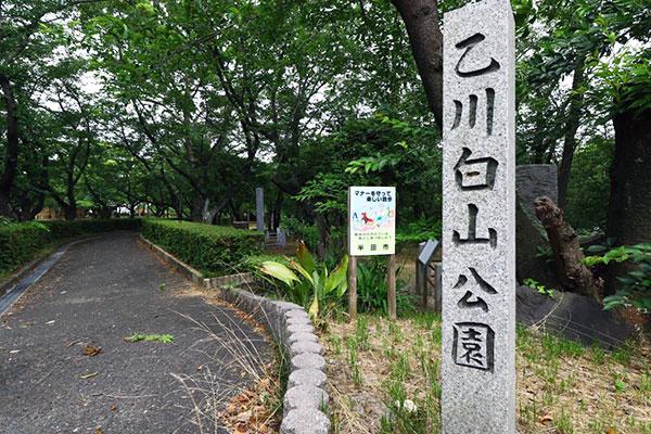 桜の季節 ~半田付近の花見スポットのご紹介~