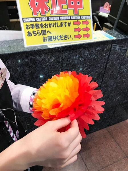 きれいな花!!