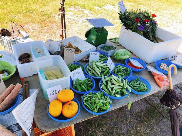 新鮮な野菜・果物