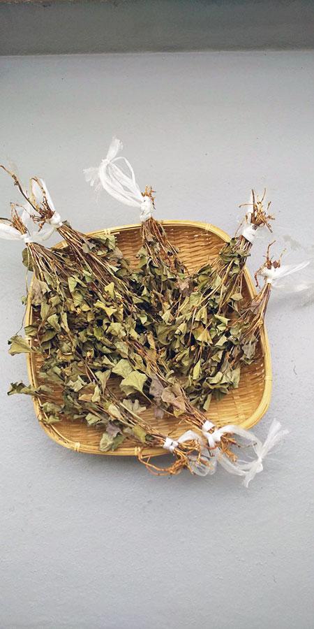 コロナ禍で過ごすステイホームに、ひと時の「憩い」を・・・手作りドクダミ茶と『のれん作り』