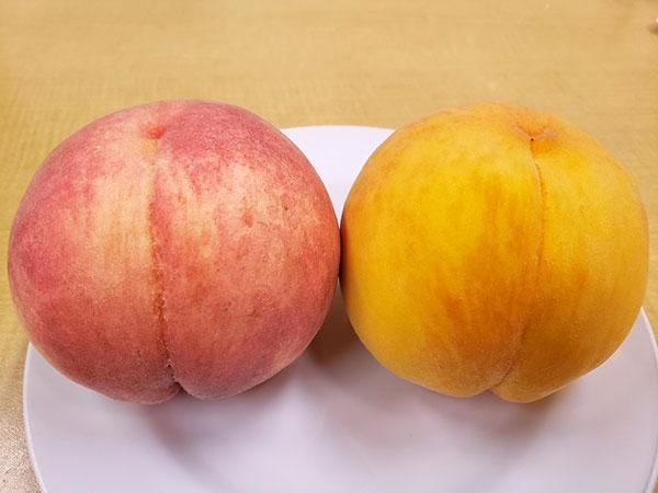 白桃とゴールデンピーチ