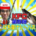 衣浦バチ抜けシーバスシーズン到来!・・・KFC第5弾